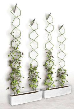 decoraciones-con-plantas-que-debes-intentar-ya-en-tu-hogar (14) - Curso de Organizacion del hogar