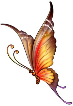 High Quality Black Butterfly Tattoos Promotion-Shop for High . Butterfly Clip Art, Butterfly Drawing, Butterfly Pictures, Butterfly Painting, Butterfly Wallpaper, Orange Butterfly, Purple Butterfly Tattoo, Butterfly Kisses, Art Papillon