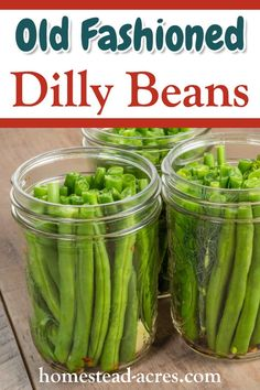 Easy to make Pickled Dilly Beans! These are one of my favourite pickles and make a great snack. Easy canning directions to enjoy these pickles all year. Canning Beans, Easy Canning, Canning Pickles, Canning Tips, Canning Green Beans Recipe, Canning Labels, Pickled Vegetables Recipe, Canning Vegetables, How To Pickle Vegetables