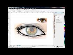 how you design smooth vector art : corel draw x5