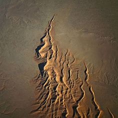 """Namib Desert - """"Here, the dunes wander. Grains of sand are blown by the wind up one side of the dune to the top, where they roll down the other side. In this way, the narrow ridges slither across the dry, stony ground."""" © Bernhard Edmaier"""
