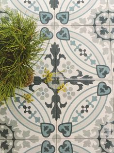 A contemporary twist on the traditional encaustic look. A natural finish patterned floor tile featuring shades of Blue, grey & white. Wet Room Flooring, Grey Flooring, Grey Floor Tiles, Blue Tiles, Bathroom Colors, Bathroom Ideas, Tiled Hallway, Fish Creek, Floor Patterns