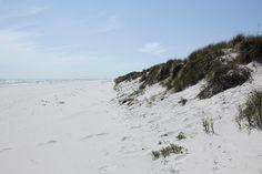 Guide till Österlen - 6 bästa tipsen! — Nordiska Kök Logs, Guide, Places To Go, Beach, Travel, Outdoor, Sweden, Nature, Viajes