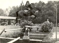 Holy Cow- look how high this jumper is!