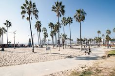 WOW air offers cheap flights to Los Angeles from Europe. Let your star shine and book the best flight deals to Los Angeles, California directly from our website. Venice Beach, Santa Monica, State Parks, Disneyland, San Diego, Wow Air, Los Angeles Neighborhoods, The Beach, California Beach