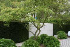 The Laurent-Perrier Garden, designed by Luciano Giubbilei