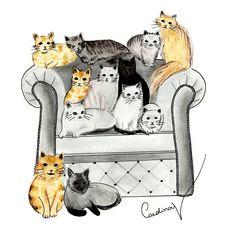 Gatos no sofá - Em grafite e lápis de cor
