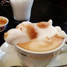 Tierisch gute Latte Art | Webfail - Fail Bilder und Fail Videos
