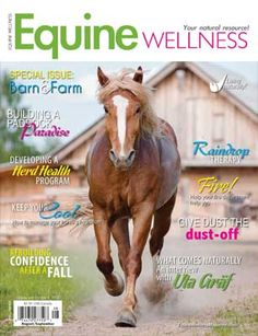 There are three common ways to add extra calories to your horse's diet. More carbohydrates (typically from cereal grains), more protein (usually from alfalfa) – . Horse Books, Fab Life, Rain Drops, Young Living, Live For Yourself, Health And Wellness, Need To Know, Essential Oils, Therapy