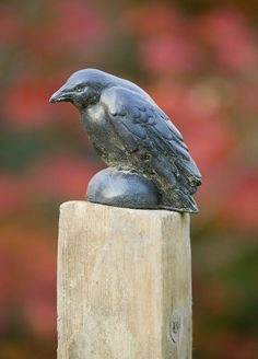 Perfect for Halloween! Add a little spooky style to your garden.  Great Garden Supply - Campania Small Raven, Cast Stone Animal Statue Garden Art, $29.99 (http://www.greatgardensupply.com/campania-small-raven-cast-stone-animal-statue-garden-art/)