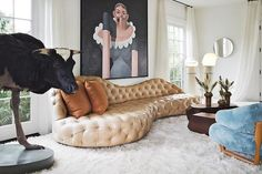 Modern eclectic living room.  This gives me great peace about my decorating.