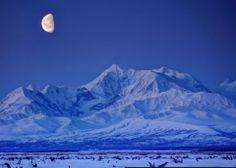 sebastian saarloos | Alaska Range in Delta, early Sunday morning as the moon ... | My Alas ...