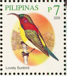 Lovely Sunbird stamps - mainly images - gallery format