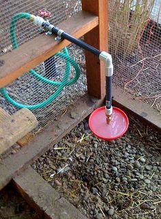 Chicken Coop - - Automatic waterer in chicken coop Building a chicken coop does not have to be tricky nor does it have to set you back a ton of scratch. Backyard Chicken Coops, Chicken Coop Plans, Building A Chicken Coop, Diy Chicken Coop, Chickens Backyard, Chicken Tractors, Chicken Pen, Chicken Coup, Chicken Life