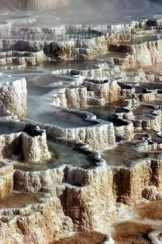 Yellowstone NP, Mammoth Hot Springs Terrace, Wyoming and Montana Yellowstone Nationalpark, Yellowstone Park, Yellowstone Hot Springs, Oh The Places You'll Go, Places To Travel, Places To Visit, Wyoming, Parc National, Travel Images