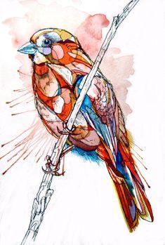Bird Acuarela, by Abby Diamond
