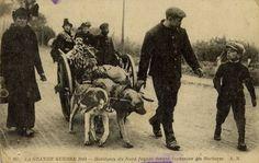 Vluchtelingen, 1914