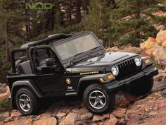 Jeep Wrangler TJ Golden Eagle  Ours has the Eagle on the Hood