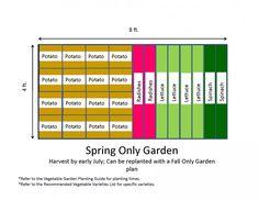Miraculous Raised Vegetable Garden Layout 4x8 on Garden Ideas with
