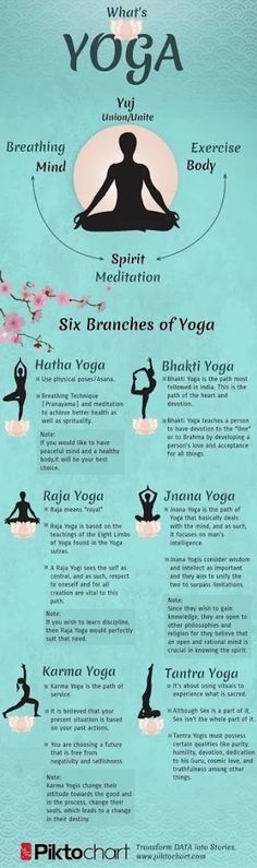 What #yoga really is! #eightlimbs