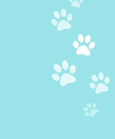 Dog Cute Backgrounds