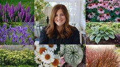 Shade Garden, Garden Plants, Garden Gnomes, Gardening For Beginners, Gardening Tips, Outdoor Plants, Outdoor Gardens, Best Perennials, Flowers Perennials