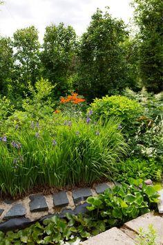 Perinnekasvit kukkivat komeasti vanhassa maisemassa | Viherpiha