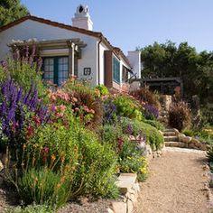 drought-tolerant courtyard