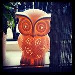 Aqua-lady - My owl lamp :)