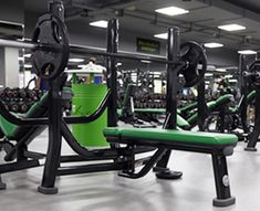 Life Fitness Signature Benches and Racks in Germany Training Equipment, No Equipment Workout, Keep Fit, At Home Gym, Gym Workouts, Benches, Germany, Fitness, Life