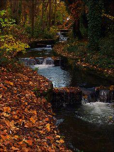 transylvanialand:    Stream [Explore] by RestlessFiona on Flickr.