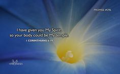 1 Corinthians 6:19 WEB Or don't you know that your body is a temple of the Holy Spirit which is in you, which you have from God? You are n...