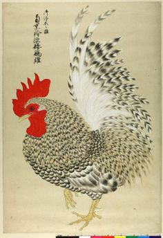 workman: heracliteanfire: Japan, ca (via British Museum) Japanese Painting, Chinese Painting, Chinese Art, Rooster Painting, Rooster Art, Chicken Crafts, Chicken Art, Japanese Drawings, Japanese Prints
