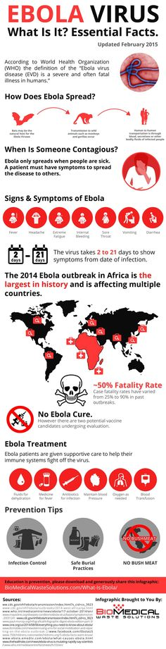 What Is Ebola? And Why America Is Not In Danger! #infographic #Health #Ebola