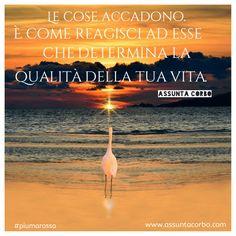 Quando costruisci un atteggiamento costruttivo la realtà diventa una danza straordinaria, un'avventura da cui imparare e un'esperienza per cui gioire.  Ci sono eventi che non possiamo cambiare ma che possiamo vivere con l'attitudine più costruttiva.   La realtà è ciò che crediamo sia la realtà.  #piumarossa #citazioni #greatattitude  Great-Attitude si svolge dal 16 al 18 settembre in Sardegna.  Info e iscrizioni: www.assuntacorbo.com/great-attitude