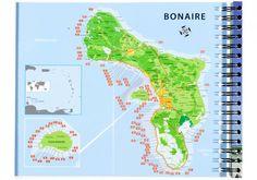 Duikgids Bonaire - GoDolphins.nl