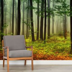 green-and-orange-misty-forest-forest-square-wall-murals