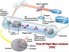 mass-spectrometry-basic-principles-20-638.jpg (638×479)