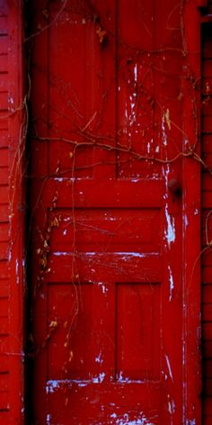 ♦old red door♦                                                       …
