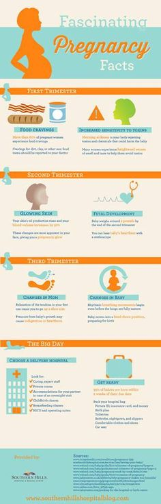 Fascinating #pregnancy #facts - from your first trimester through to the big day! #maternity #baby