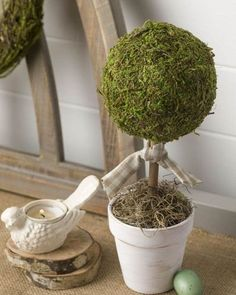 @curiouscountry posted to Instagram: Look at this fun use of a Moss topiary ball-- placed on a dowel post in a flower pot, tied with a cute rustic ribbon, and the base covered in Spanish Moss. Find these moss products in our store to re-create this look yourself. Photo from @kippiathome - love it!⁣ ⁣ #diycrafts #craftidea #diyproject #artproject #doityourself #ifeelcrafty #getcreative #create #creativity #moss #homedecor #spring #decoration #spanishmoss #topiary #decorated #homedecoration #hom