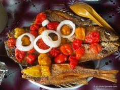 Authentic Jamaican Fish Recipes -Steamed, Fried, Jerked, Curried & Escoveitched!