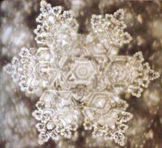 Cristal d'eau  Snowflake Beauty inspired