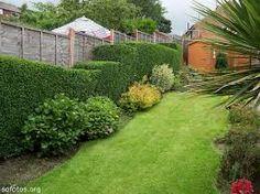 Resultado de imagem para jardinagem paisagismo