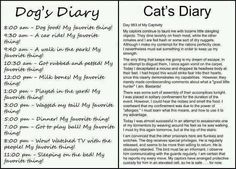 Dog and cats diary