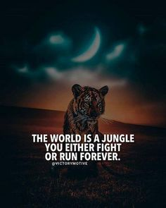 The world is a jungle..
