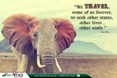 """Travel Quote ✨ : """"We travel, some of us forever, to seek other states, other lives , other souls """" - Anais Nin -      Book your #CheapFlight tickets with #Travel #Specialists ✈ : http://www.airafrica.co.uk/     #TravelQuotes #Quotes #QuotesoftheDay #AirAfrica #Cheap #Flights #AfricanTravel #FlightstoAfrica #AfricanTravelSpecialists"""