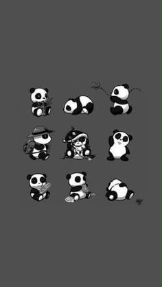 baby pandas Baby Panda HD Wallpapers For Mobile Iphone 7 Wallpaper Backgrounds, Panda Wallpaper Iphone, Cute Panda Wallpaper, Panda Wallpapers, Hd Wallpapers For Mobile, Bear Wallpaper, Cute Cartoon Wallpapers, Mobile Wallpaper, Little Panda