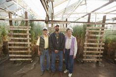 The Akiyama Family- America's last Carnation Grower in Watsonville CA! #AmericanGrown #CAGrown #originmatters #lastcarnation #ubloom