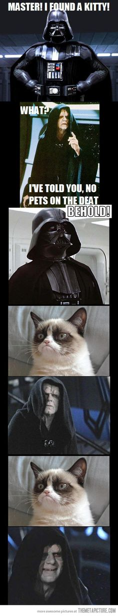 Star Wars meets grumpy cat